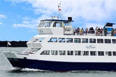 Southampton 3 River Cruise inc. Fish & Chip Lunch