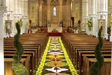 view of the carpet of flowers looking down the aisle at Arundel Cathedral