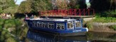 Chichester Canal Cruise & Afternoon Tea