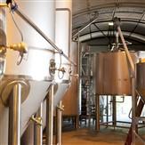 Tenterden & Old Dairy Brewery Tour & Tasting