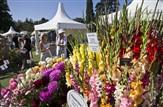 RHS ~ Wisley Flower Show