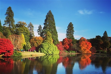 Image of colourful trees and shrubs overlooking the lake at Sheffield Park Garden